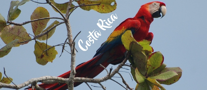 Titel Costa Rica