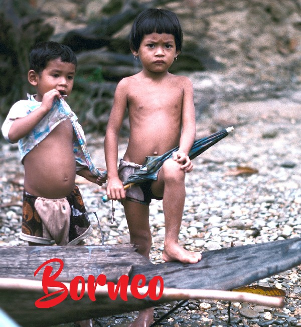 Titelfoto Borneo