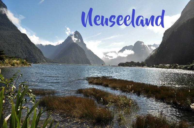 Titel Neuseeland 800